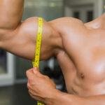 muscler les biceps