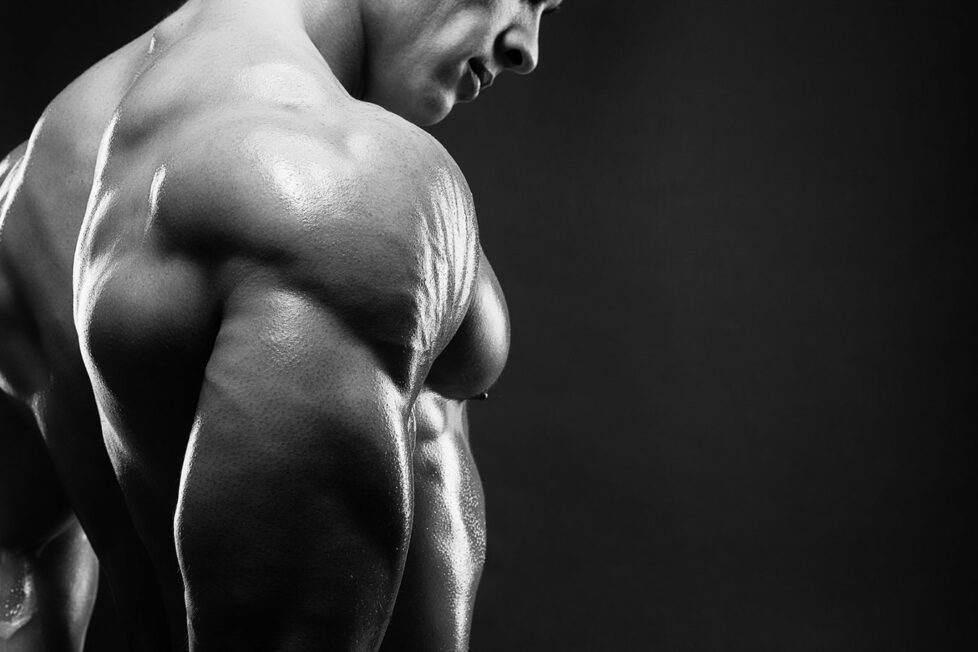 muscler ses triceps